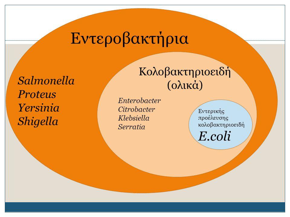 Εντεροβακτήρια Ε.coli Κολοβακτηριοειδή (ολικά) Salmonella Proteus