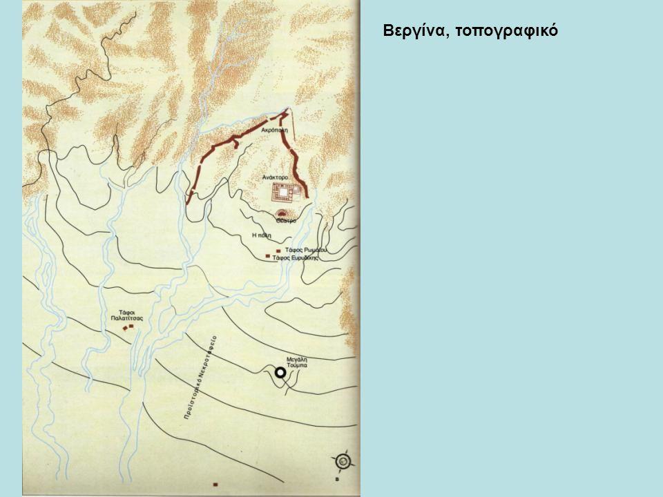 Βεργίνα, τοπογραφικό