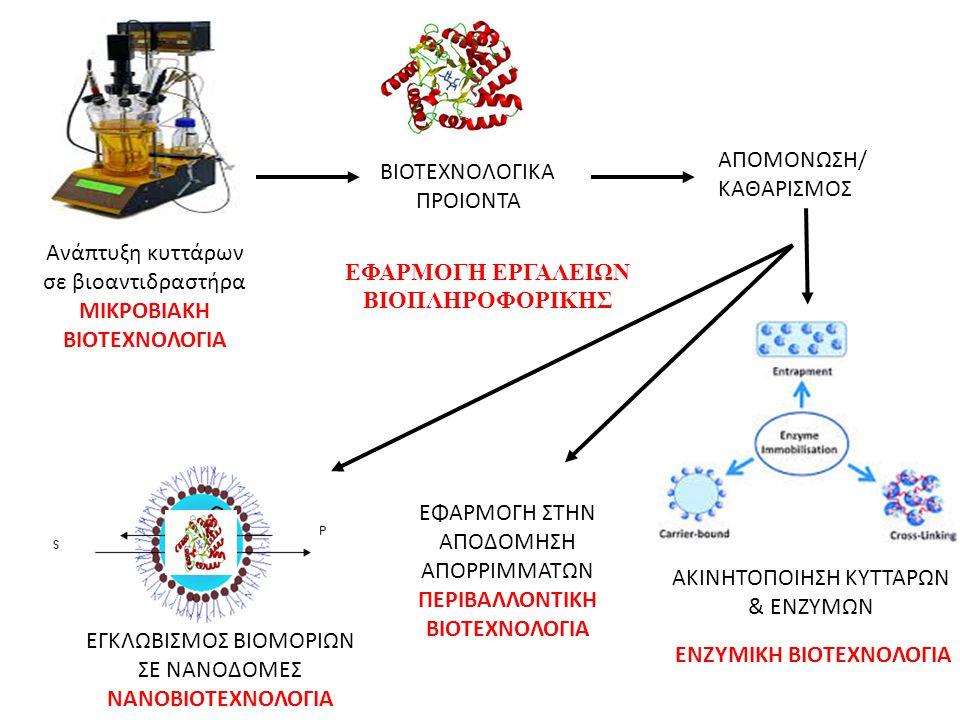 Ανάπτυξη κυττάρων σε βιοαντιδραστήρα ΜΙΚΡΟΒΙΑΚΗ ΒΙΟΤΕΧΝΟΛΟΓΙΑ