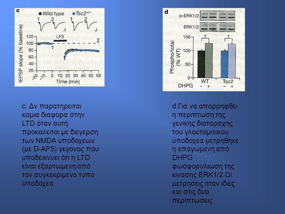 c. Δν παρατηρειται καμια διαφορα στην LTD όταν αυτή προκαλειται με διεγερση των NMDA υποδοχεων (με D-AP5) γεγονος που υποδεικνυει ότι η LTD είναι εξαρτωμενη από τον συγκεκριμενο τυπο υποδοχεα