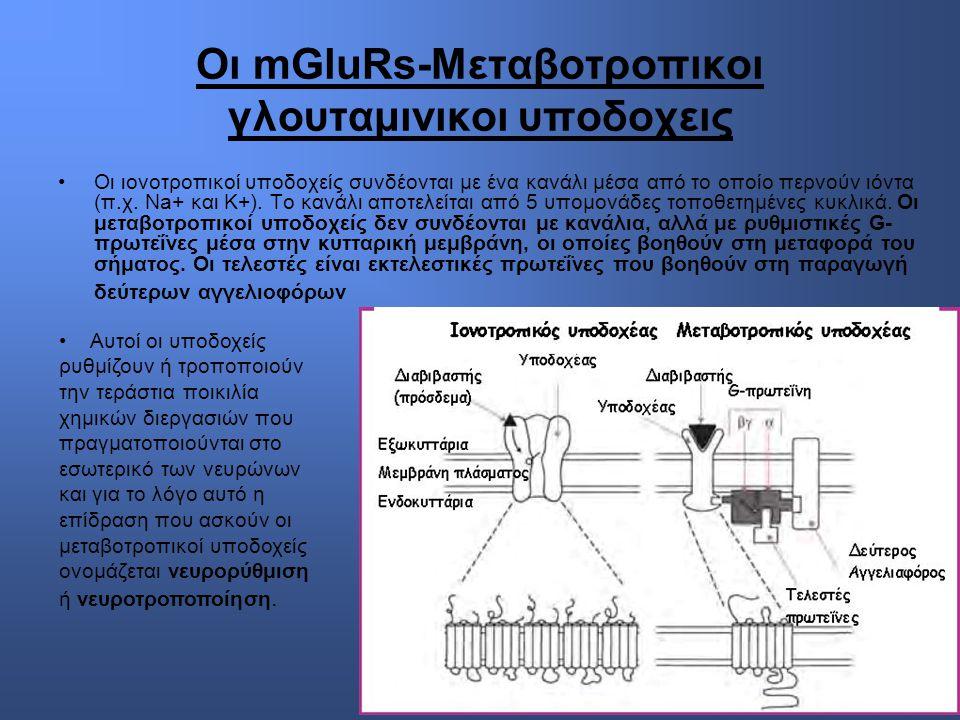 Οι mGluRs-Μεταβοτροπικοι γλουταμινικοι υποδοχεις