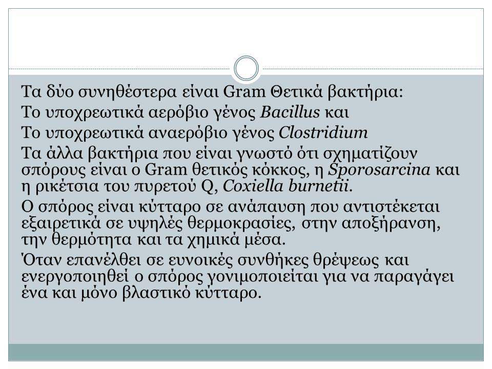 Τα δύο συνηθέστερα είναι Gram Θετικά βακτήρια: Το υποχρεωτικά αερόβιο γένος Bacillus και Tο υποχρεωτικά αναερόβιο γένος Clostridium Τα άλλα βακτήρια που είναι γνωστό ότι σχηματίζουν σπόρους είναι ο Gram θετικός κόκκος, η Sporosarcina και η ρικέτσια του πυρετού Q, Coxiella burnetii.