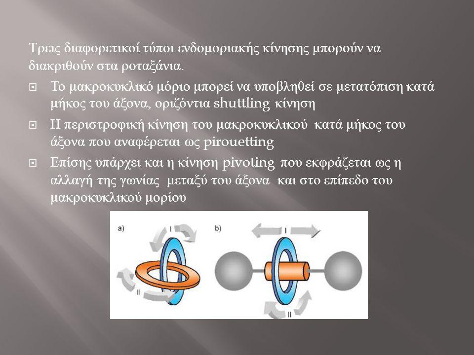 Τρεις διαφορετικοί τύποι ενδομοριακής κίνησης μπορούν να διακριθούν στα ροταξάνια.