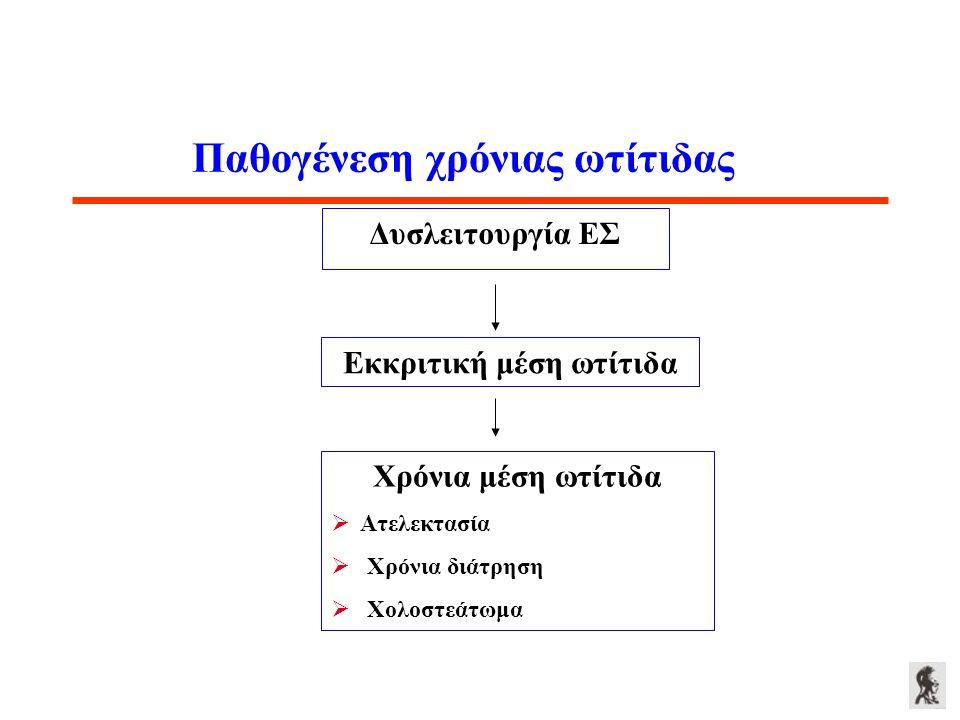 Παθογένεση χρόνιας ωτίτιδας