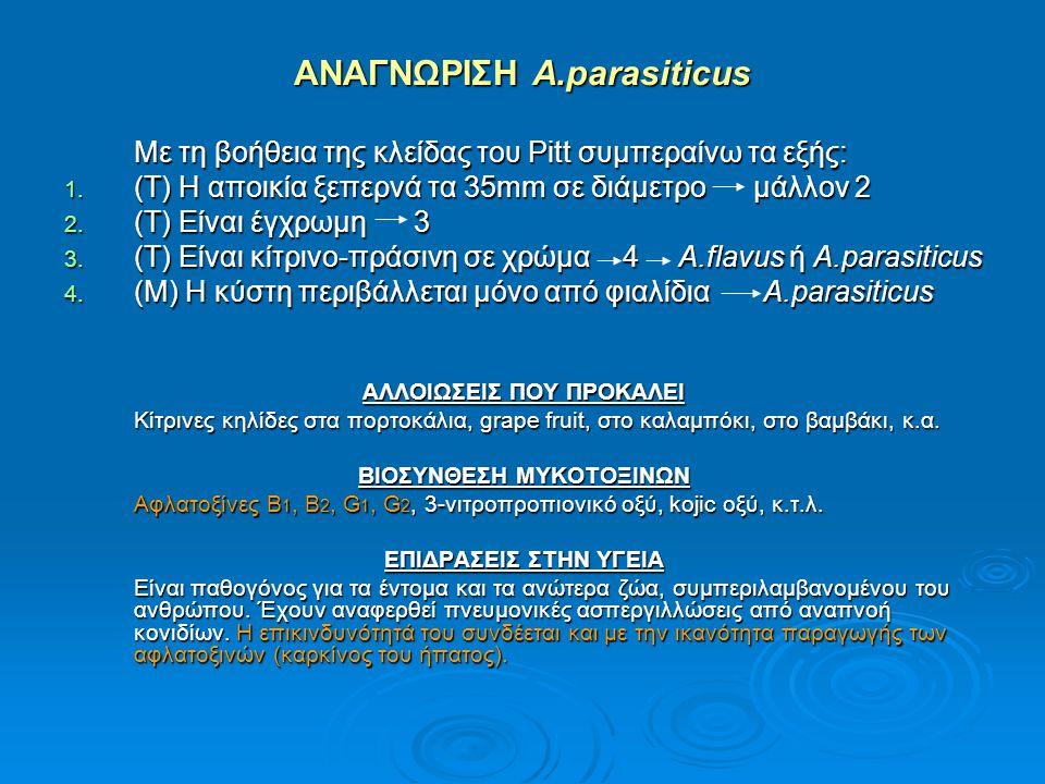 ΑΝΑΓΝΩΡΙΣΗ A.parasiticus