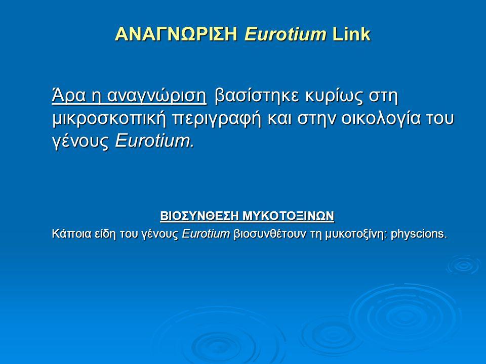 ΑΝΑΓΝΩΡΙΣΗ Eurotium Link