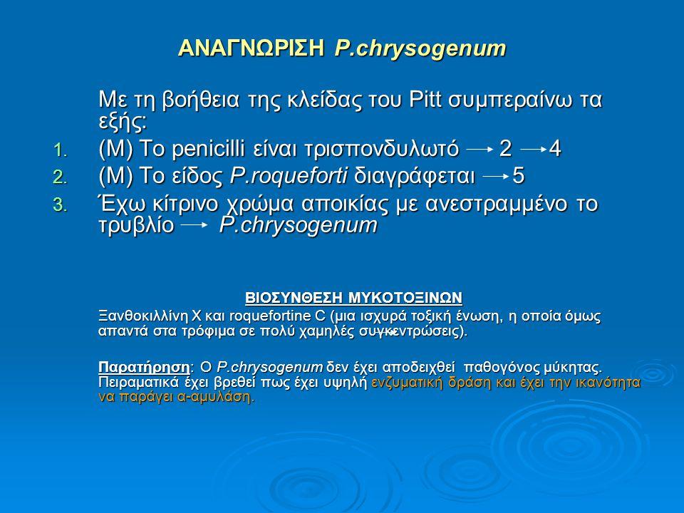 ΑΝΑΓΝΩΡΙΣΗ P.chrysogenum
