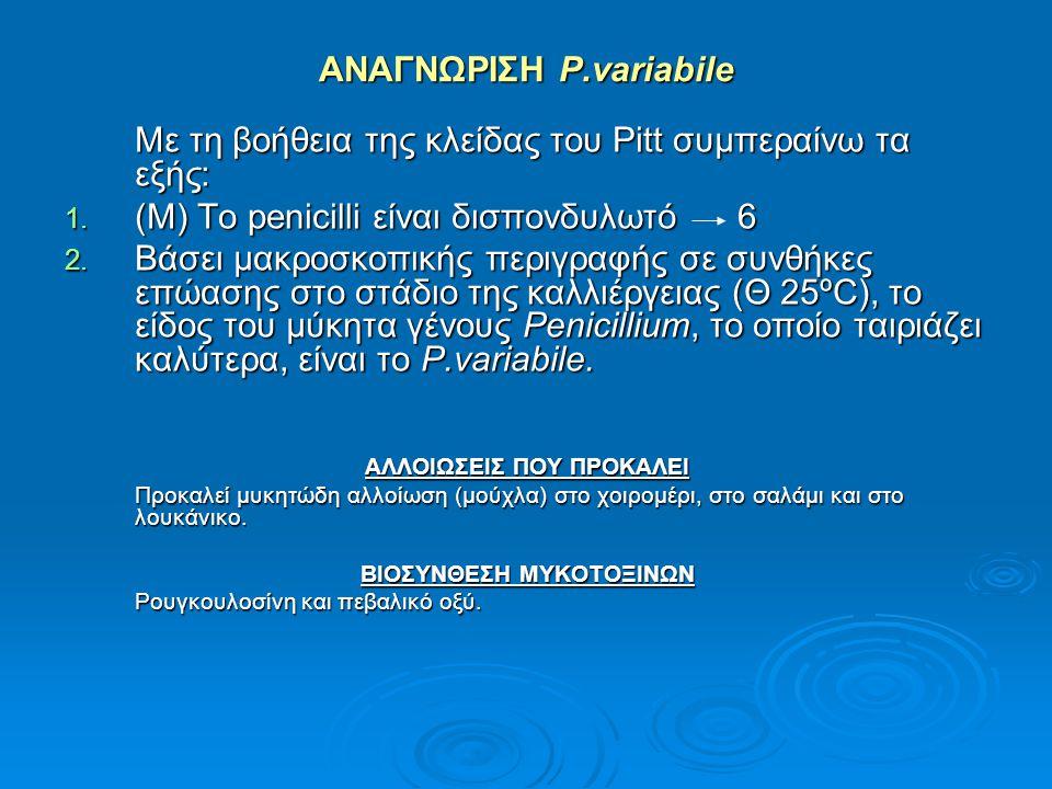 ΑΝΑΓΝΩΡΙΣΗ P.variabile