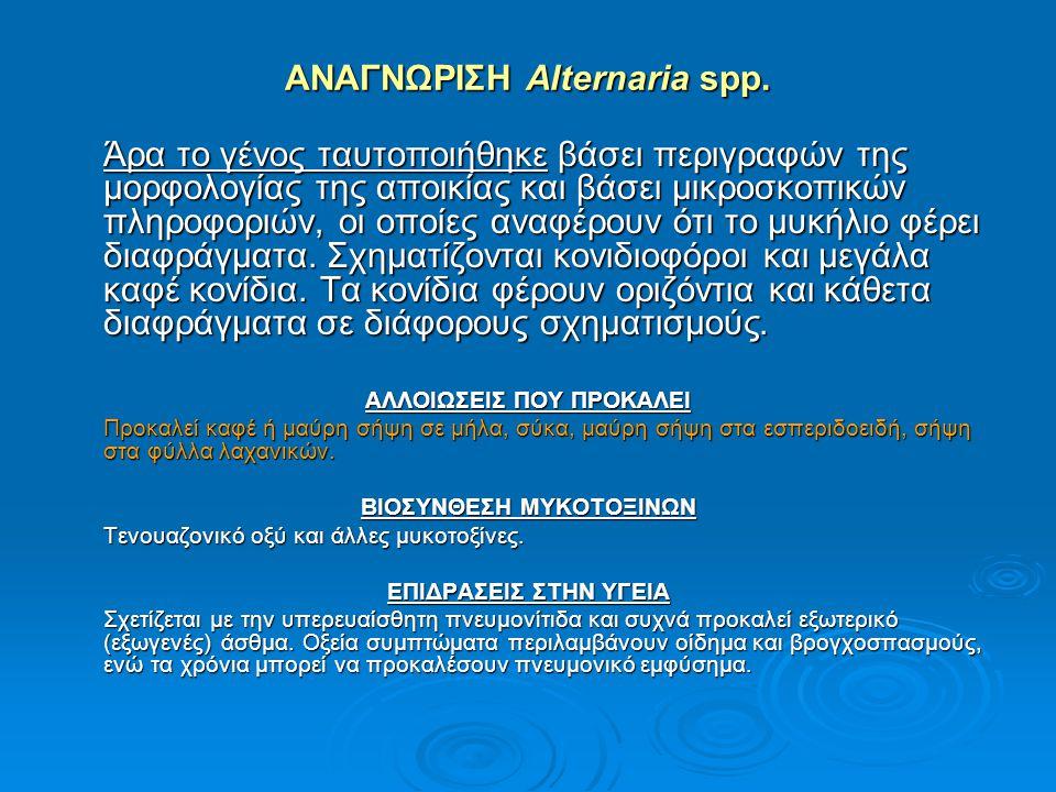 ΑΝΑΓΝΩΡΙΣΗ Alternaria spp.