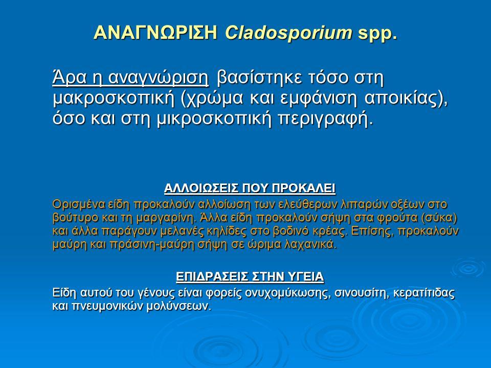 ΑΝΑΓΝΩΡΙΣΗ Cladosporium spp.