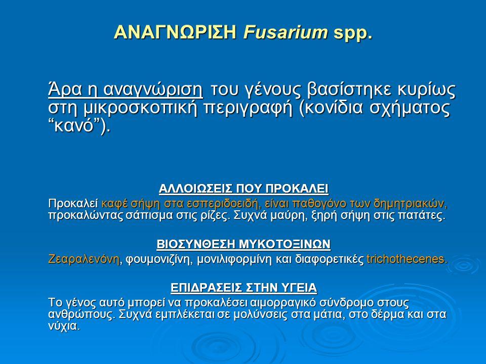 ΑΝΑΓΝΩΡΙΣΗ Fusarium spp.