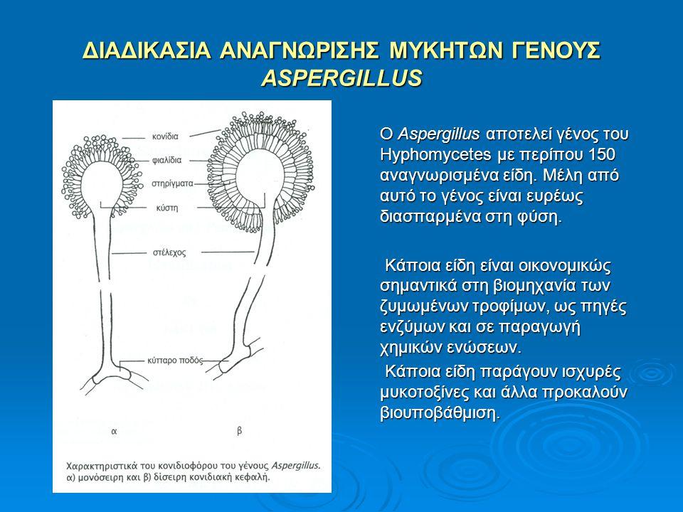 ΔΙΑΔΙΚΑΣΙΑ ΑΝΑΓΝΩΡΙΣΗΣ ΜΥΚΗΤΩΝ ΓΕΝΟΥΣ ASPERGILLUS