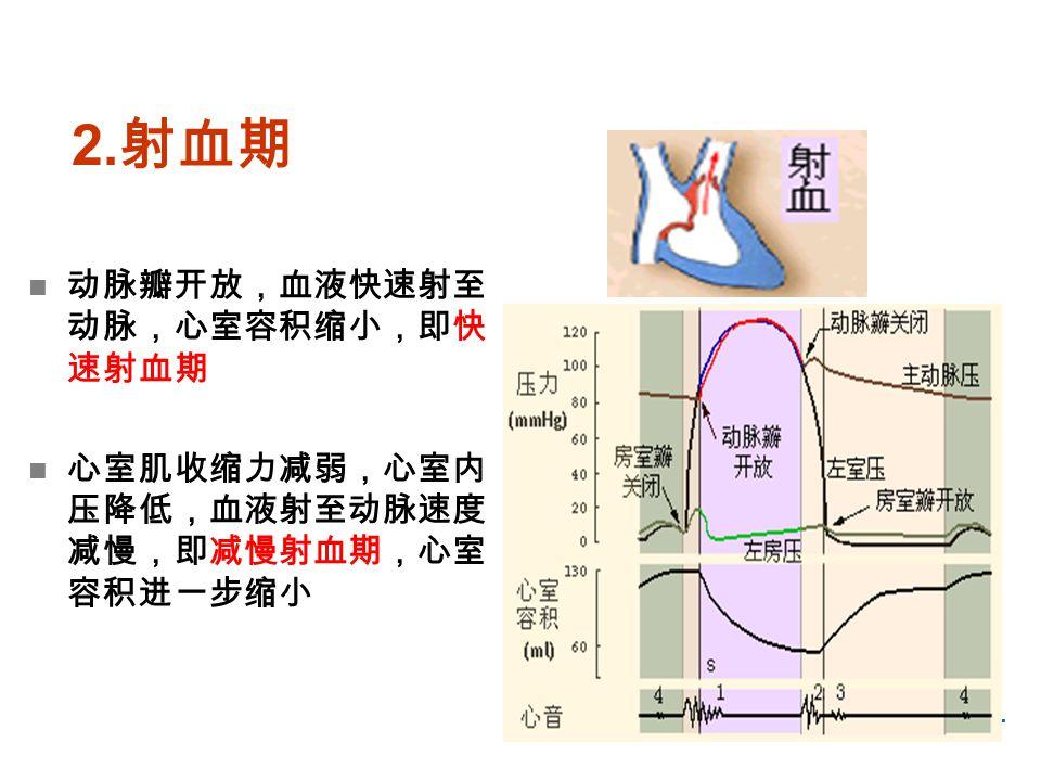 2.射血期 动脉瓣开放,血液快速射至动脉,心室容积缩小,即快速射血期