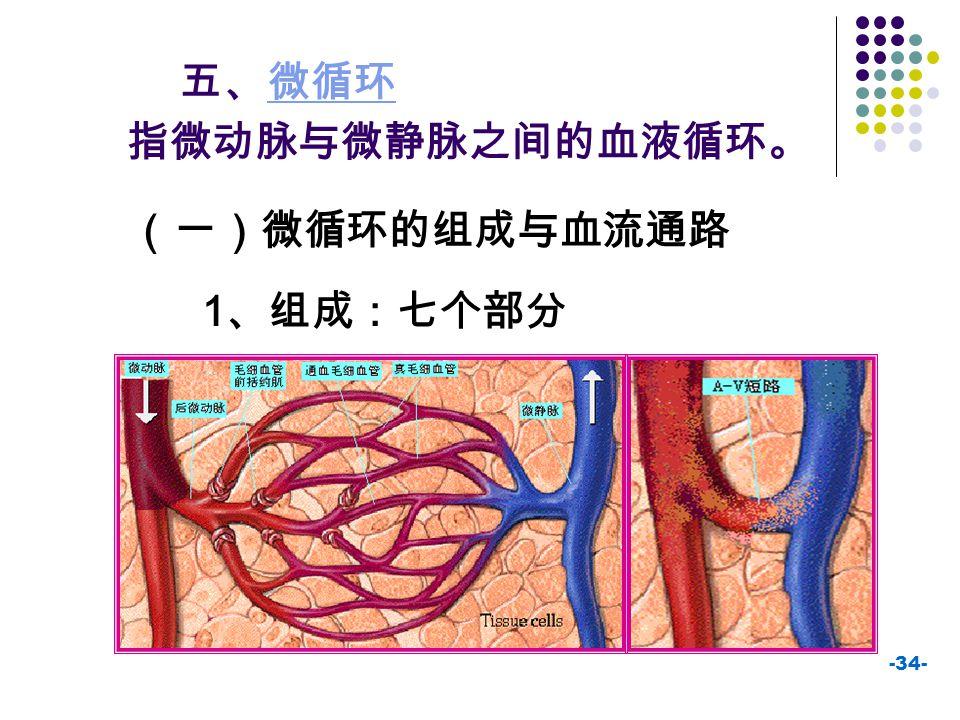 五、微循环 指微动脉与微静脉之间的血液循环。 (一)微循环的组成与血流通路 1、组成:七个部分