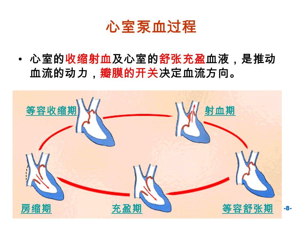心室泵血过程 心室的收缩射血及心室的舒张充盈血液,是推动血流的动力,瓣膜的开关决定血流方向。 等容收缩期 射血期 等容舒张期 充盈期 房缩期