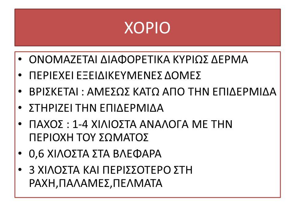 ΧΟΡΙΟ ΟΝΟΜΑΖΕΤΑΙ ΔΙΑΦΟΡΕΤΙΚΑ ΚΥΡΙΩΣ ΔΕΡΜΑ