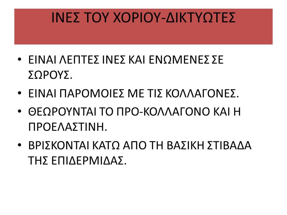 ΙΝΕΣ ΤΟΥ ΧΟΡΙΟΥ-ΔΙΚΤΥΩΤΕΣ