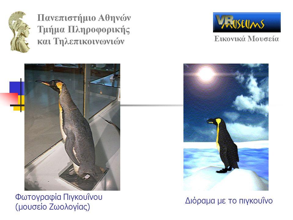 Φωτογραφία Πιγκουΐνου (μουσείο Ζωολογίας)