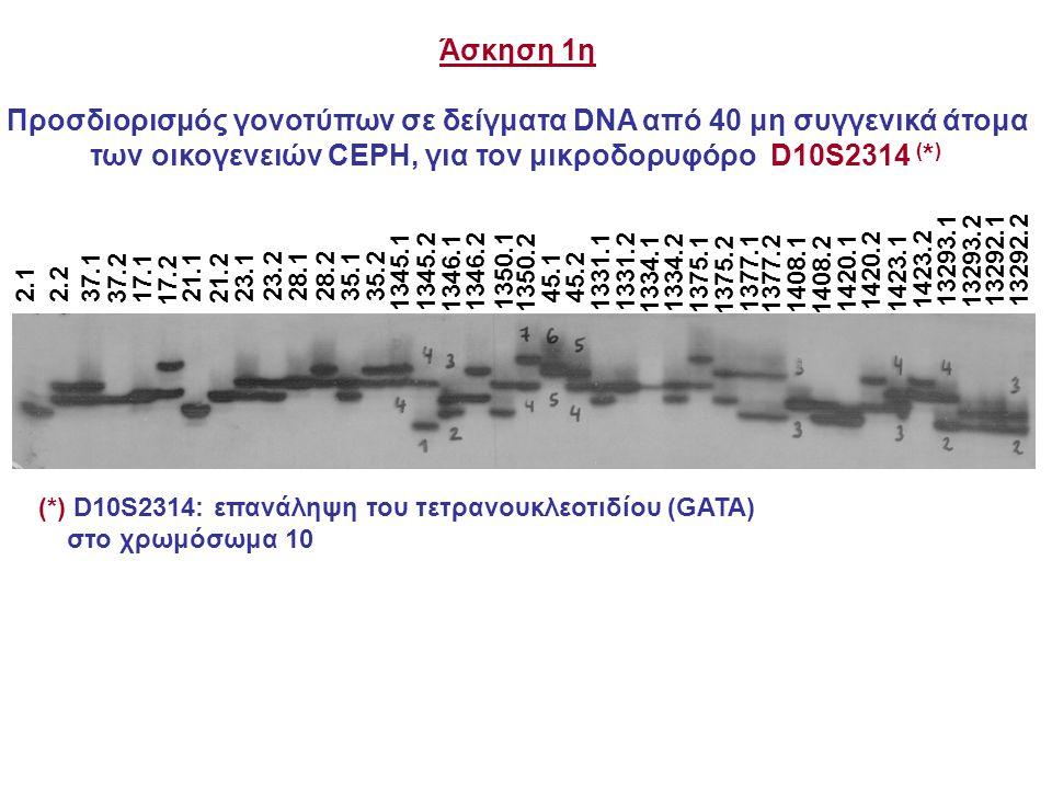 Προσδιορισμός γονοτύπων σε δείγματα DNA από 40 μη συγγενικά άτομα