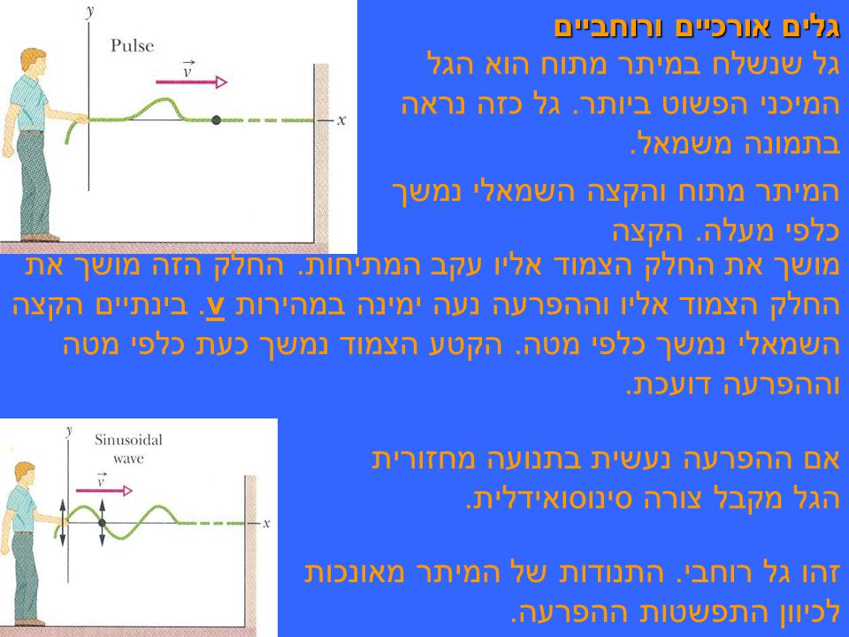 גלים אורכיים ורוחביים גל שנשלח במיתר מתוח הוא הגל המיכני הפשוט ביותר. גל כזה נראה בתמונה משמאל. המיתר מתוח והקצה השמאלי נמשך כלפי מעלה. הקצה.