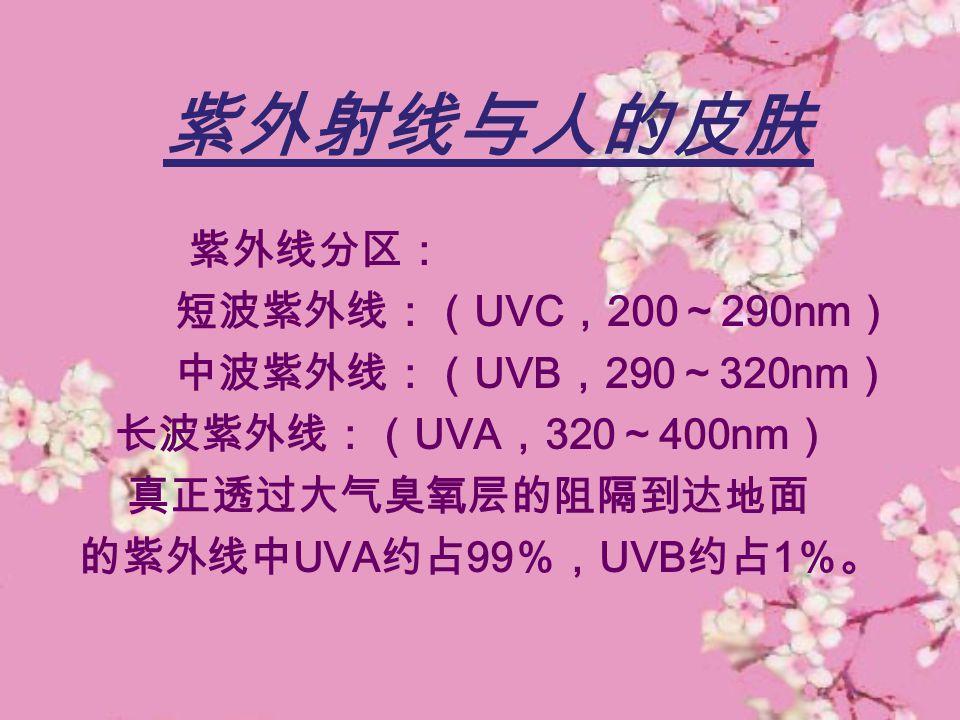 紫外射线与人的皮肤 紫外线分区: 短波紫外线:(UVC,200~290nm) 中波紫外线:(UVB,290~320nm)