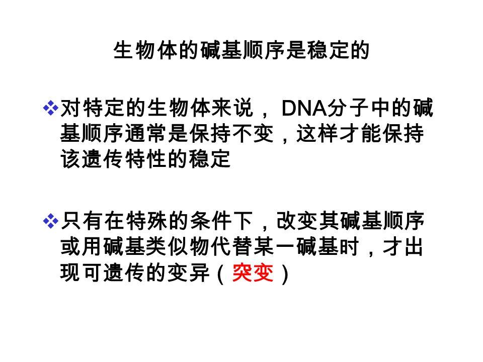 生物体的碱基顺序是稳定的 对特定的生物体来说, DNA分子中的碱基顺序通常是保持不变,这样才能保持该遗传特性的稳定.