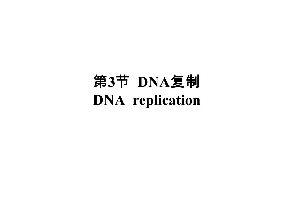 第3节 DNA复制 DNA replication