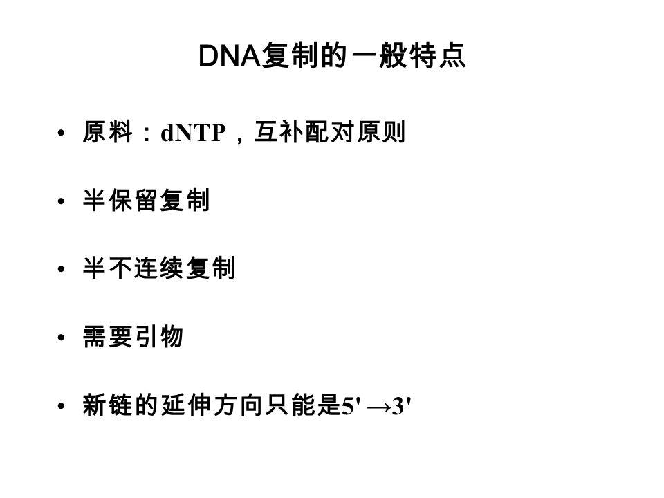 DNA复制的一般特点 原料:dNTP,互补配对原则 半保留复制 半不连续复制 需要引物 新链的延伸方向只能是5 →3