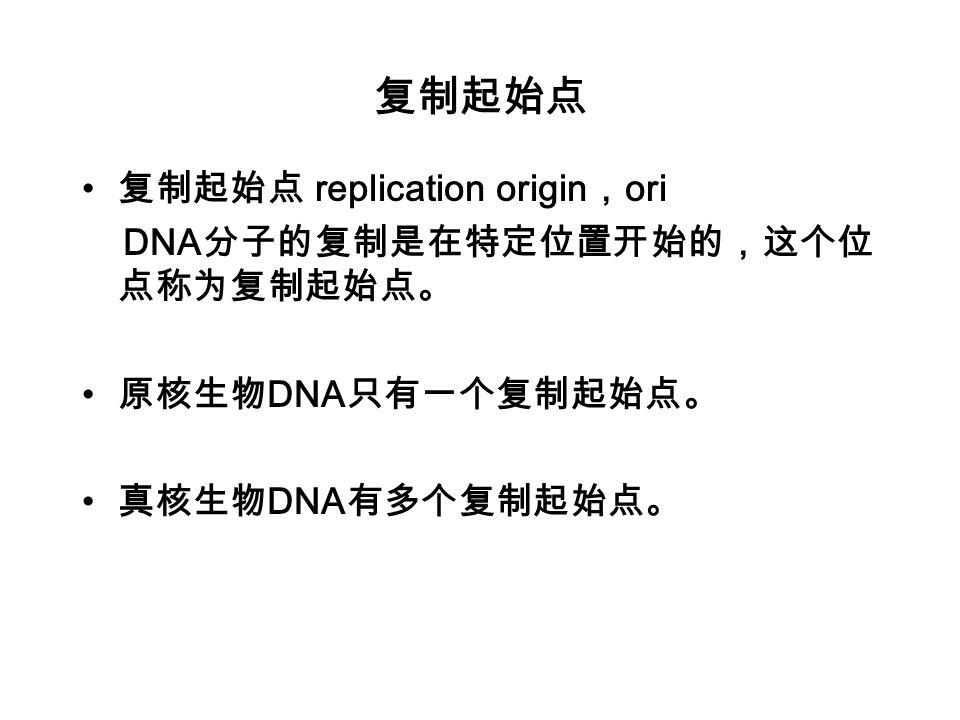 复制起始点 复制起始点 replication origin,ori DNA分子的复制是在特定位置开始的,这个位点称为复制起始点。