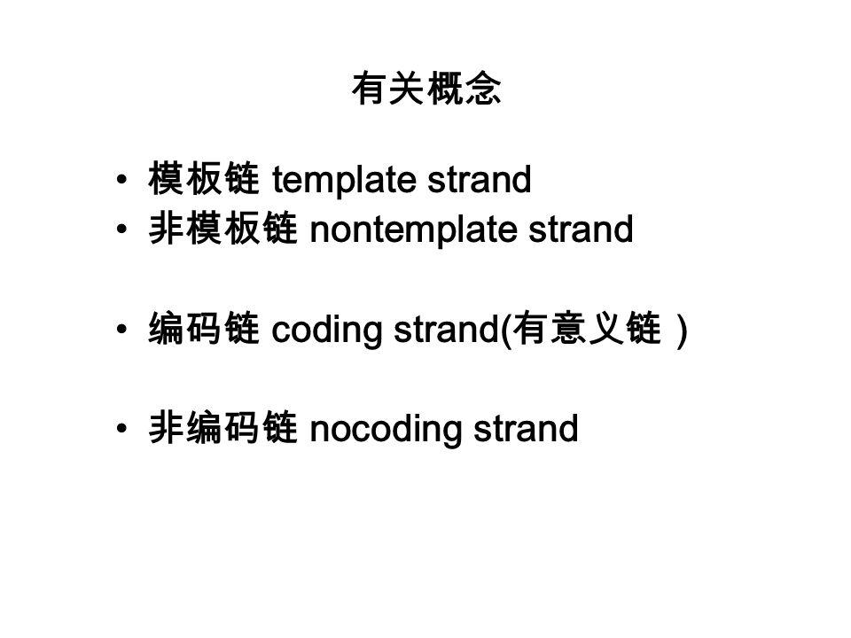 有关概念 模板链 template strand 非模板链 nontemplate strand 编码链 coding strand(有意义链) 非编码链 nocoding strand
