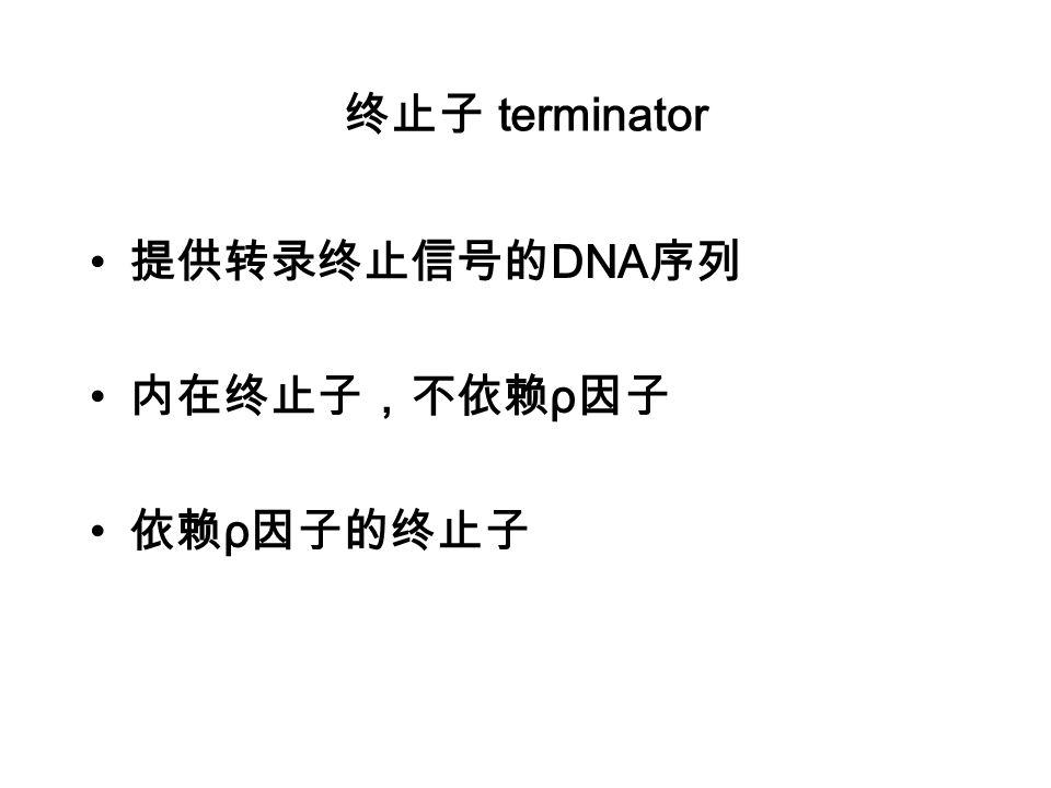 终止子 terminator 提供转录终止信号的DNA序列 内在终止子,不依赖ρ因子 依赖ρ因子的终止子