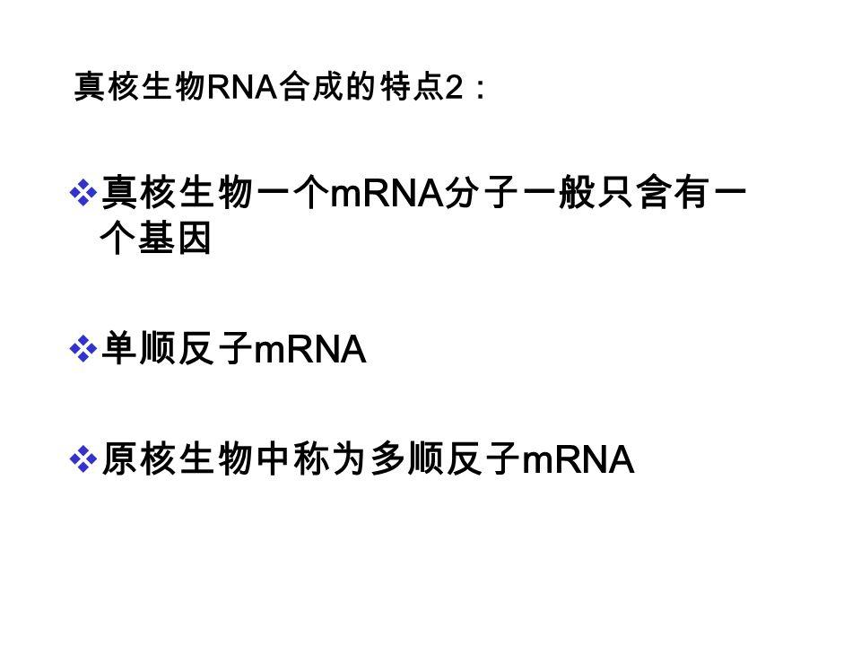 真核生物一个mRNA分子一般只含有一个基因