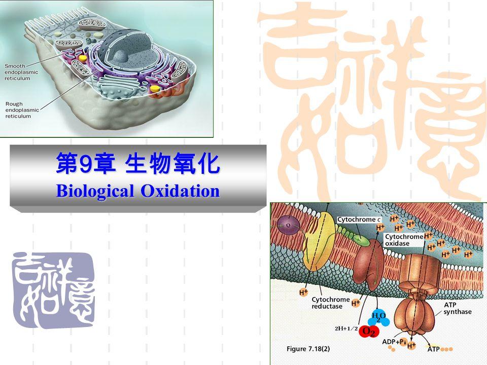 第9章 生物氧化 Biological Oxidation