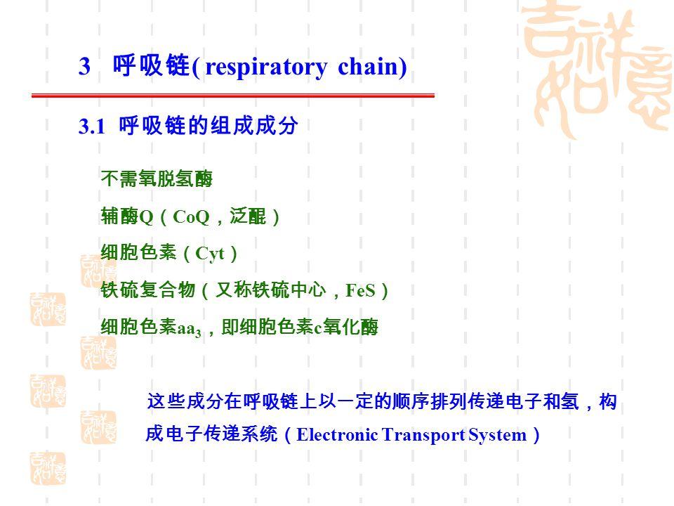 3 呼吸链( respiratory chain)