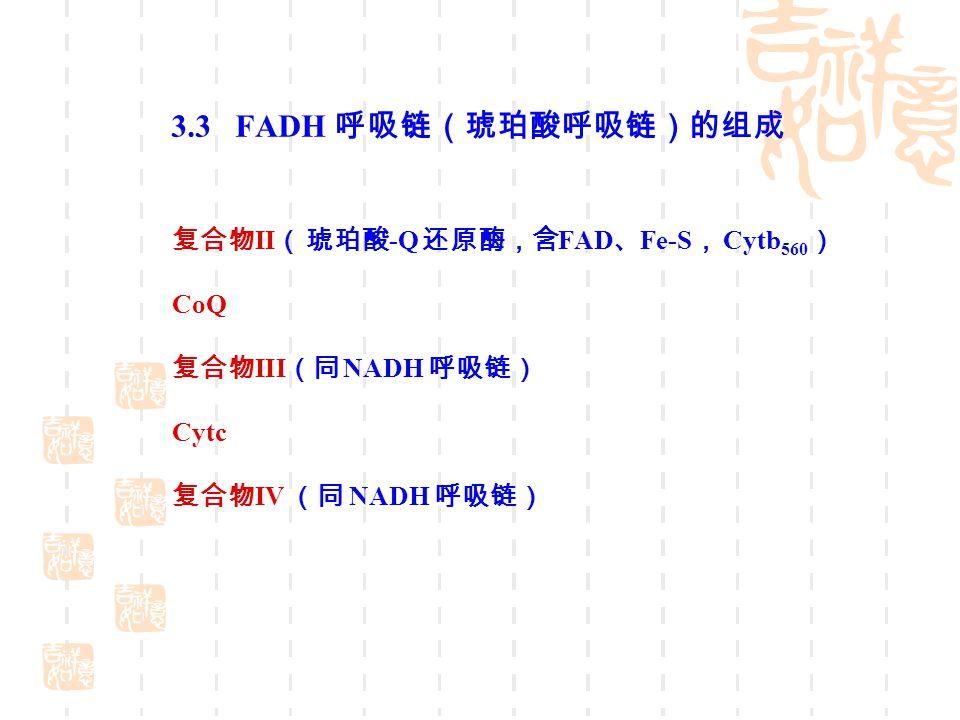 3.3 FADH 呼吸链(琥珀酸呼吸链)的组成 复合物II( 琥珀酸-Q 还原酶,含FAD、Fe-S, Cytb560) CoQ
