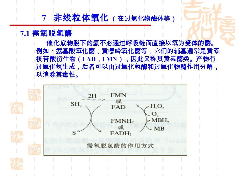 7 非线粒体氧化 (在过氧化物酶体等) 7.1 需氧脱氢酶