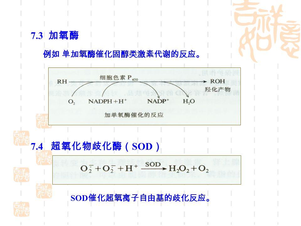 7.3 加氧酶 7.4 超氧化物歧化酶(SOD) 例如 单加氧酶催化固醇类激素代谢的反应。 SOD催化超氧离子自由基的歧化反应。