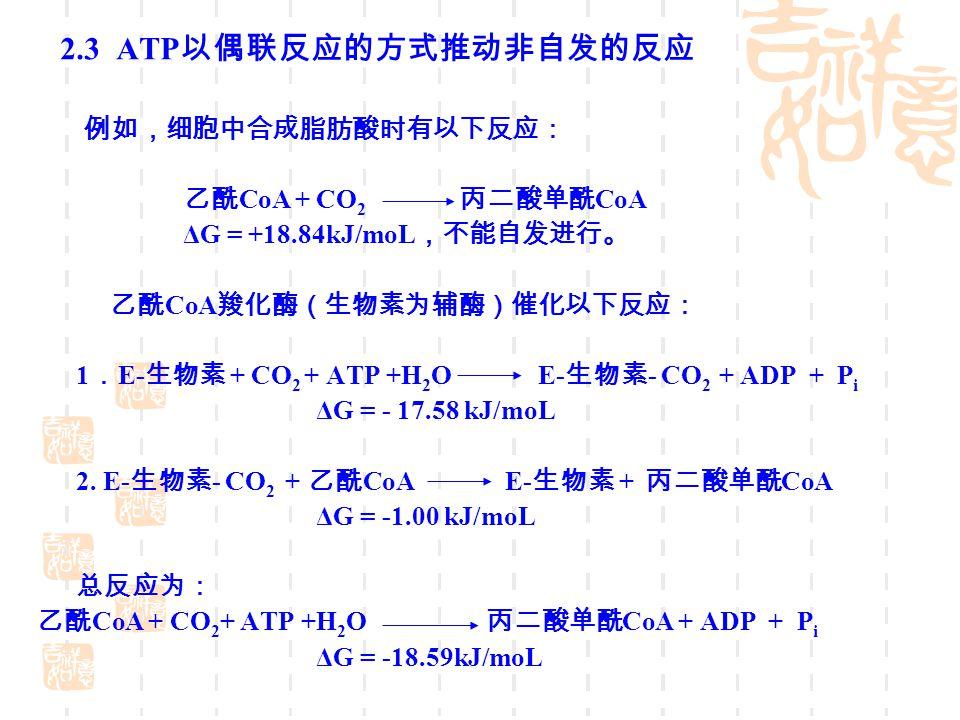 2.3 ATP以偶联反应的方式推动非自发的反应 例如,细胞中合成脂肪酸时有以下反应: 乙酰CoA + CO2 丙二酸单酰CoA