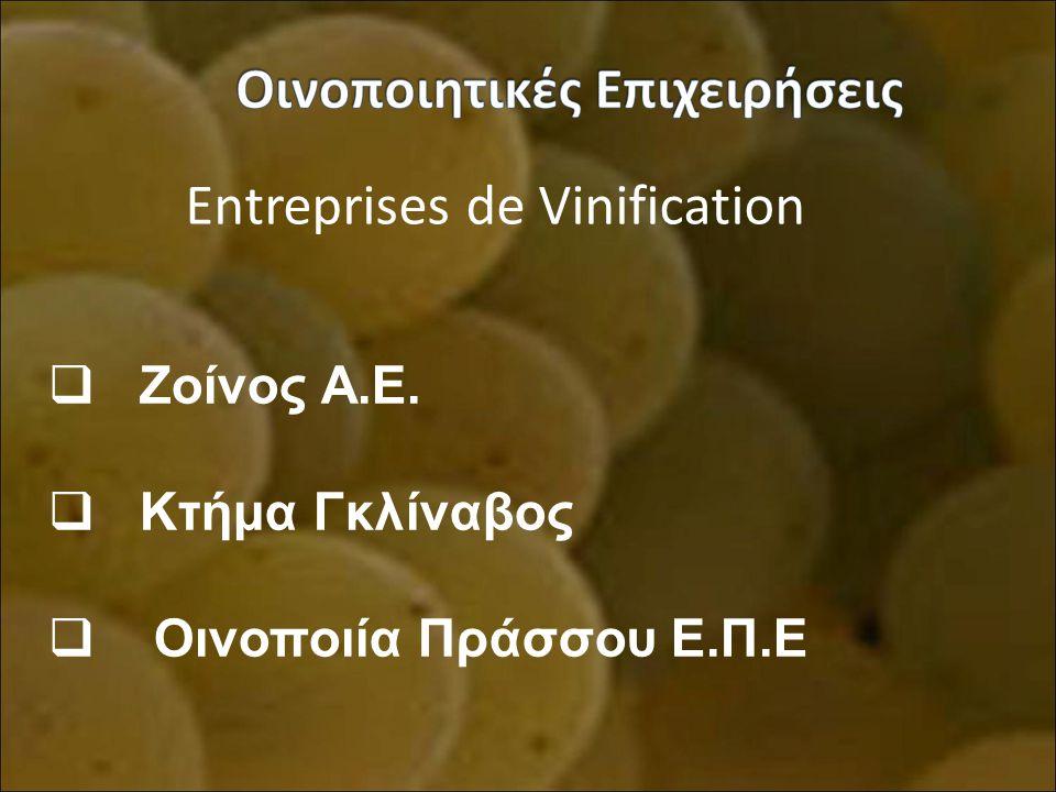 Entreprises de Vinification