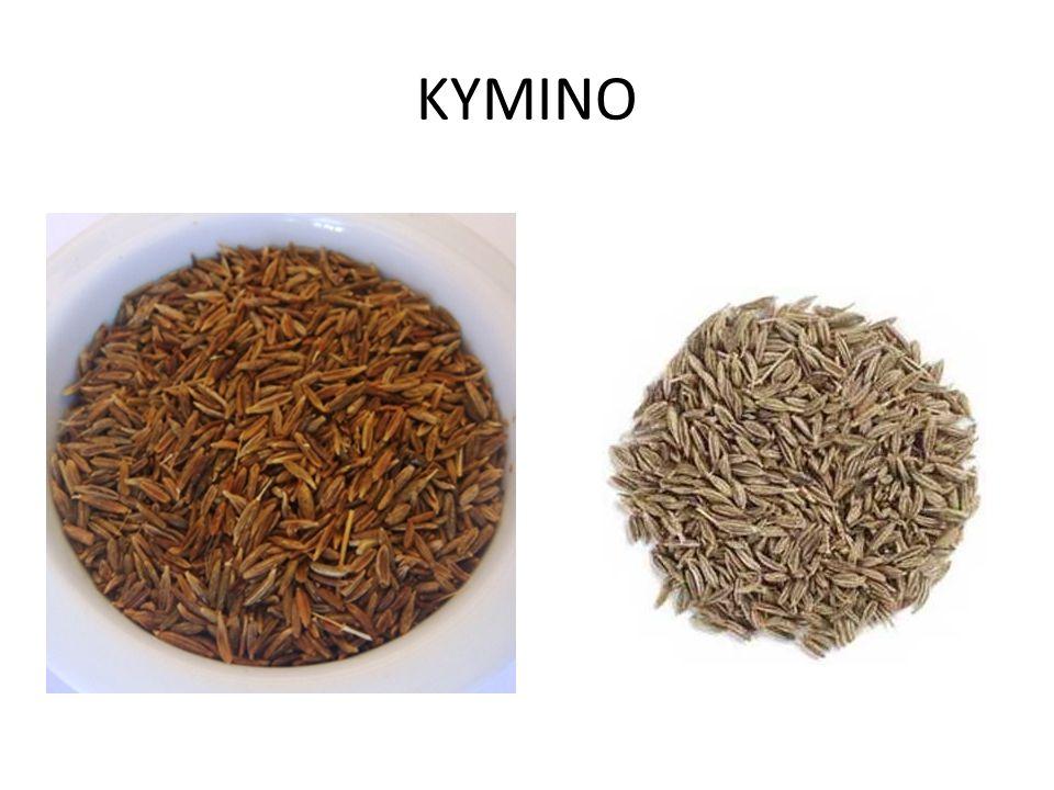 ΚΥΜΙΝΟ