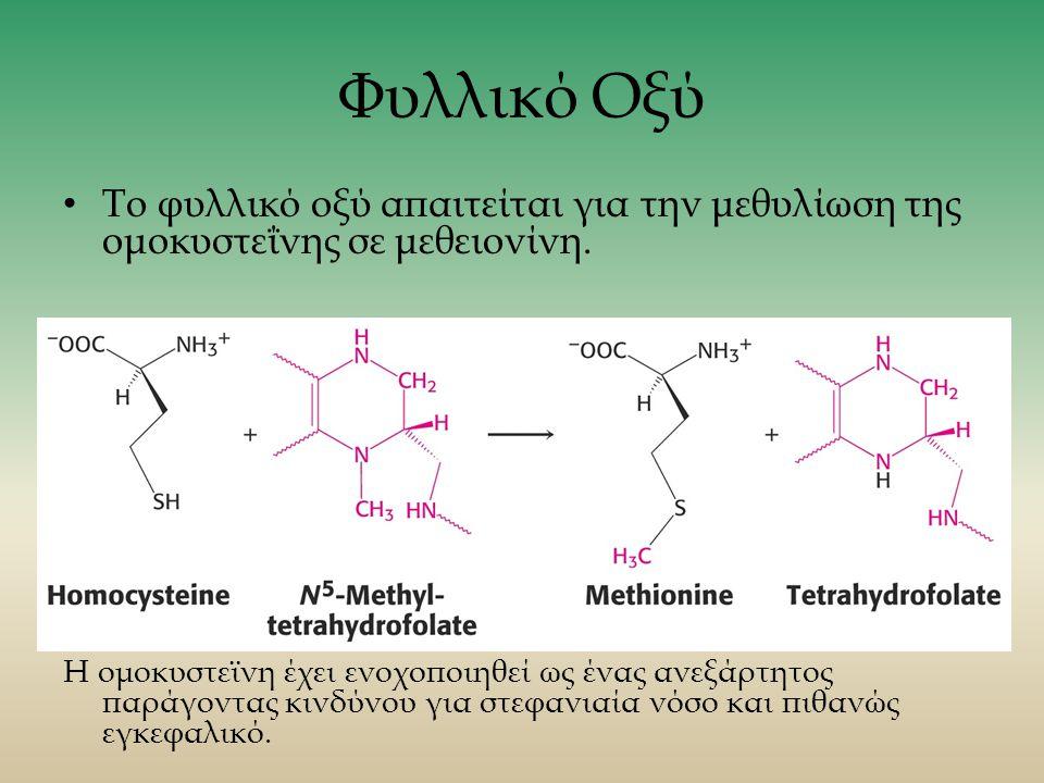 Φυλλικό Οξύ Το φυλλικό οξύ απαιτείται για την μεθυλίωση της ομοκυστεΐνης σε μεθειονίνη.