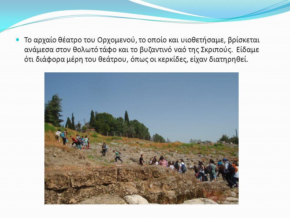 Το αρχαίο θέατρο του Ορχομενού, το οποίο και υιοθετήσαμε, βρίσκεται ανάμεσα στον θολωτό τάφο και το βυζαντινό ναό της Σκριπούς.