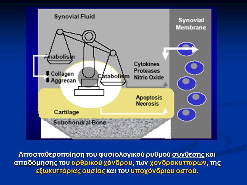 Αποσταθεροποίηση του φυσιολογικού ρυθμού σύνθεσης και αποδόμησης του αρθρικού χόνδρου, των χονδροκυττάρων, της εξωκυττάριας ουσίας και του υποχόνδριου οστού.