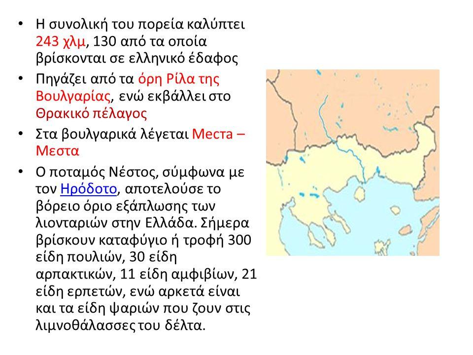 Η συνολική του πορεία καλύπτει 243 χλμ, 130 από τα οποία βρίσκονται σε ελληνικό έδαφος