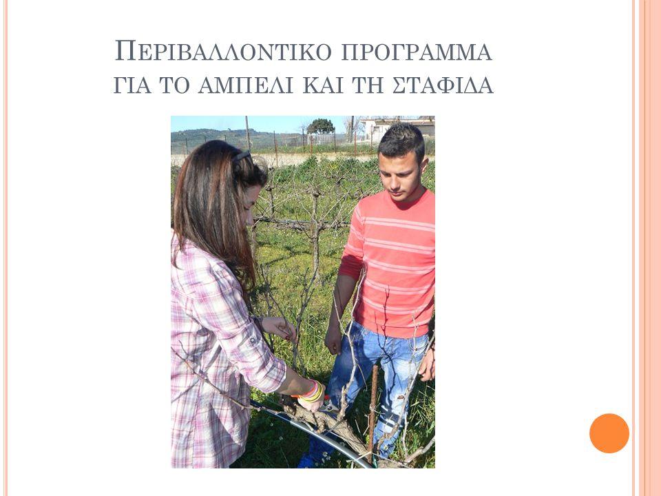 Περιβαλλοντικο προγραμμα για το αμπελι και τη σταφιδα