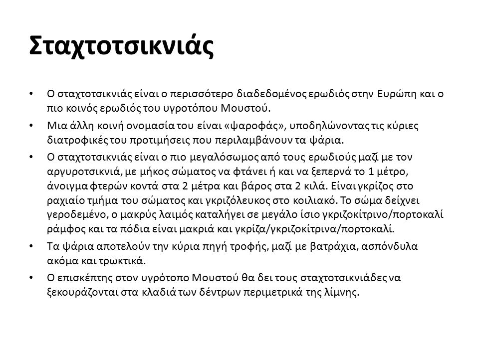 Σταχτοτσικνιάς Ο σταχτοτσικνιάς είναι ο περισσότερο διαδεδομένος ερωδιός στην Ευρώπη και ο πιο κοινός ερωδιός του υγροτόπου Μουστού.
