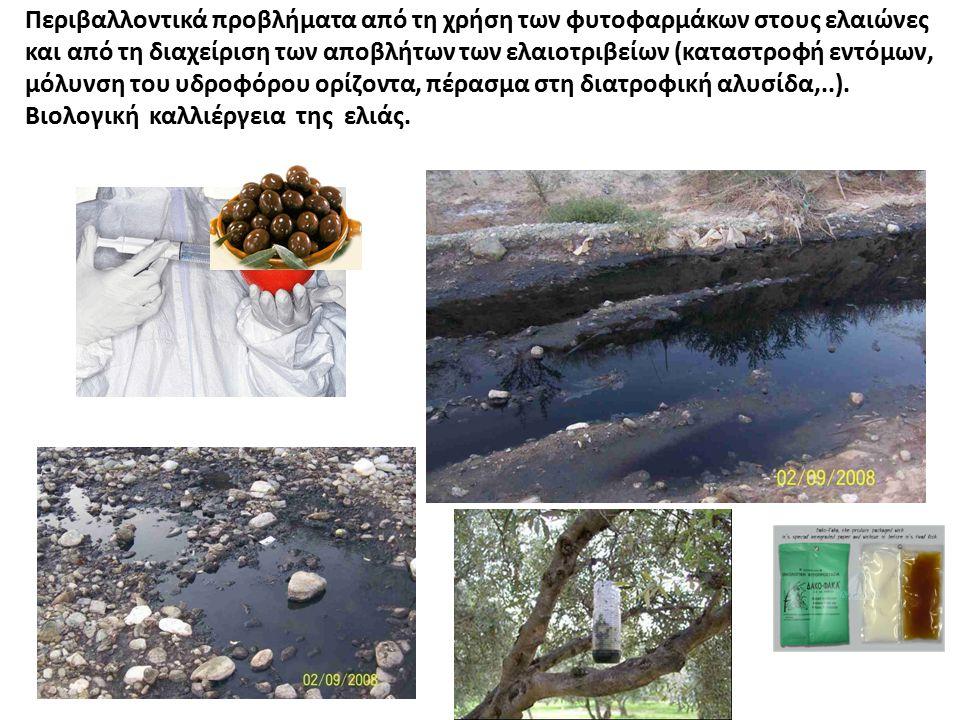 Περιβαλλοντικά προβλήματα από τη χρήση των φυτοφαρμάκων στους ελαιώνες και από τη διαχείριση των αποβλήτων των ελαιοτριβείων (καταστροφή εντόμων, μόλυνση του υδροφόρου ορίζοντα, πέρασμα στη διατροφική αλυσίδα,..).