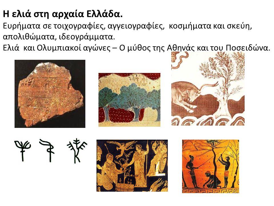Η ελιά στη αρχαία Ελλάδα