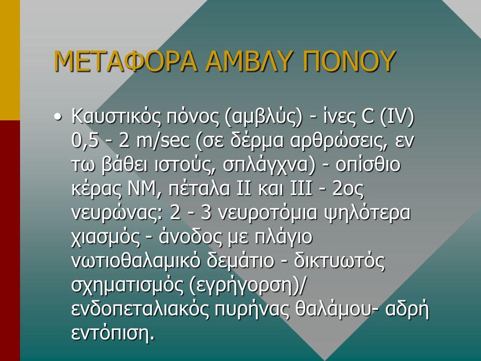 ΜΕΤΑΦΟΡΑ ΑΜΒΛΥ ΠΟΝΟΥ