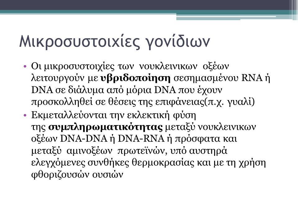 Μικροσυστοιχίες γονίδιων